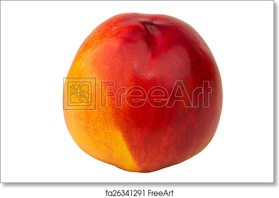 free art print of nectarine peach isolated on white background fruit freeart fa26341291 freeart