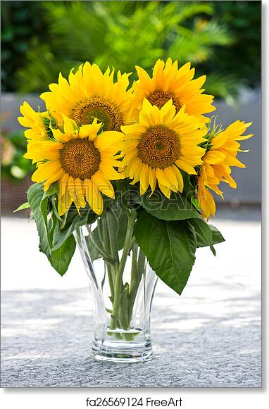 Free Art Print Of Sunflowers In A Transparent Glass Vase On Nature