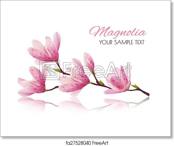 Free Art Print Of Flower Background With Blossom Branch Of Pink