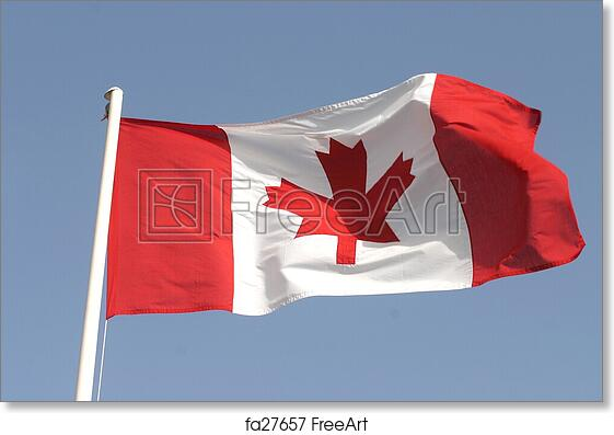 Free Art Print Of Canadian Flag The Canadian Flag Freeart Fa27657