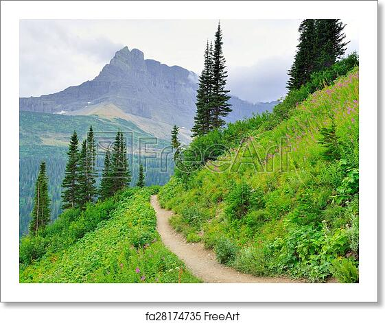 Free art print of Alpine trail to Iceberg Lake Glacier in Glacier National  Park