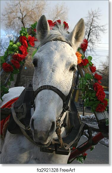Christmas Horse Pictures.Free Art Print Of Christmas Horse