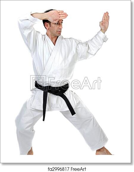 Free Art Print Of Martial Arts Stance Black Belt Karate Expert With Fight Stance Freeart Fa2996817