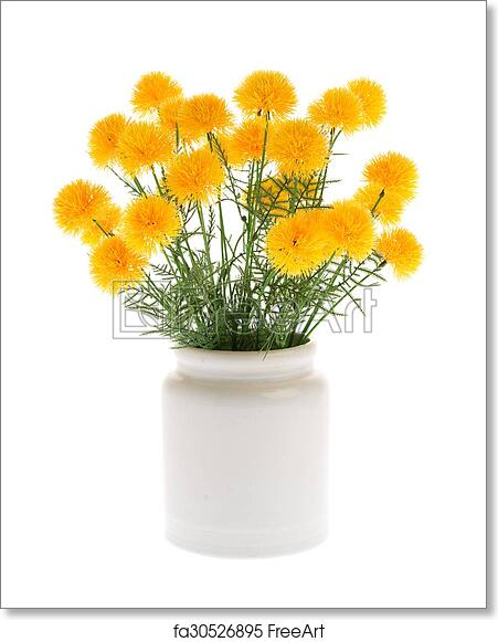 Free Art Print Of Marigold Artificial Flowers In White Ceramic Vase