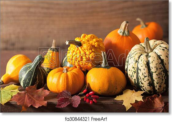Free Art Print Of Decorative Pumpkins And Autumn Leaves For Halloween