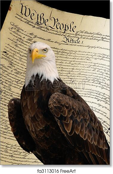 bald eagle with constitution