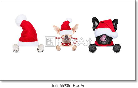 Free art print of Row of santa claus dogs. Row and group of santa ... f0a80b1ba8cf