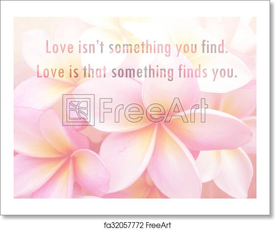 Inspirational Motivational Life Quote on Flower in Soft Focus Background Design. Love quotes.