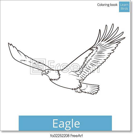 Free Art Print Of Eagle Learn Birds Coloring Book Vector