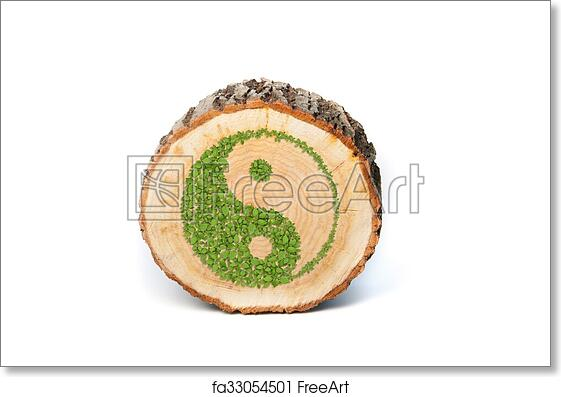 Free Art Print Of Cross Section Of Tree Trunk With Ying Yang Symbol