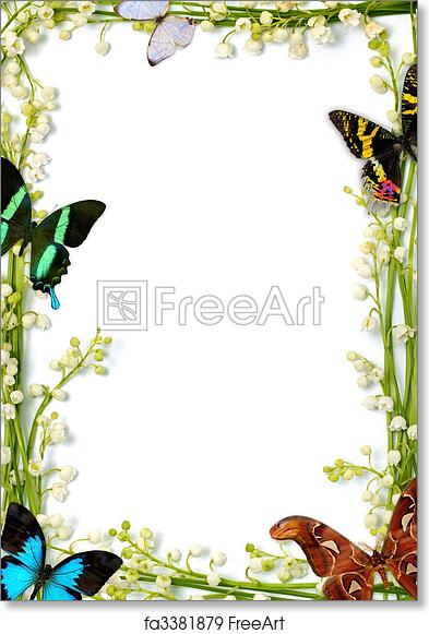 Free art print of Colorful Summer Frame With Butterflies. Lilies of ...