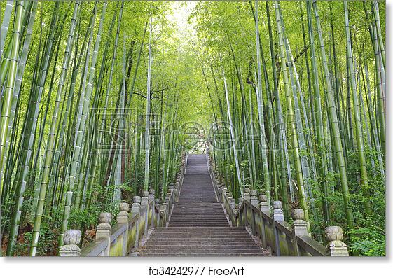 Free Art Print Of Scenic Mountaineer Step Stairs Next To The Bamboo Forest