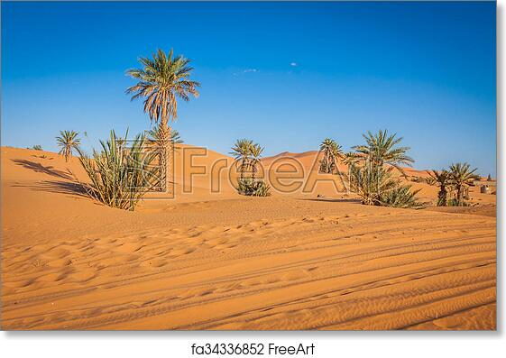 Art print POSTER Sand Dune and Trees