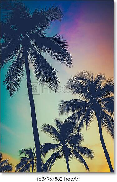 C Hammock Between Palm Trees On Tropical Art Print Home Decor Wall Art Poster