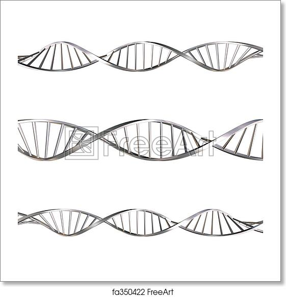 Free art print of DNA strands. DNA strands on white