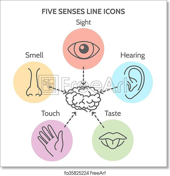 image relating to Give Me Five Poster Printable Free titled Totally free artwork print of 5 senses line icons