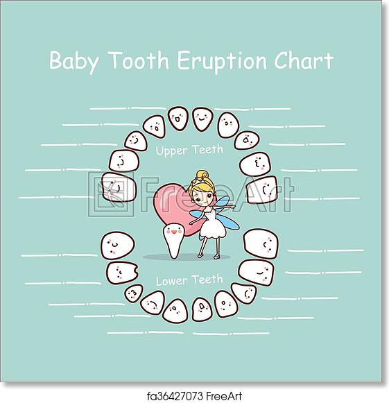 It's just an image of Baby Tooth Chart Printable with regard to toddler tooth