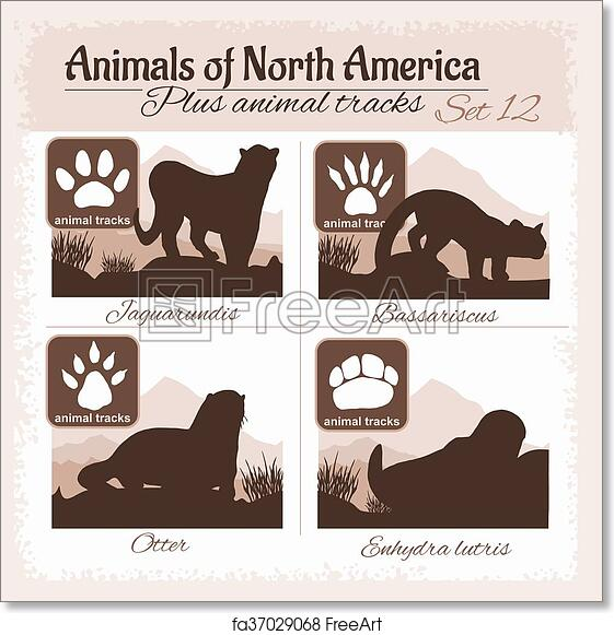 image about Printable Animal Tracks called Cost-free artwork print of North The united states pets and animal music, footprints.