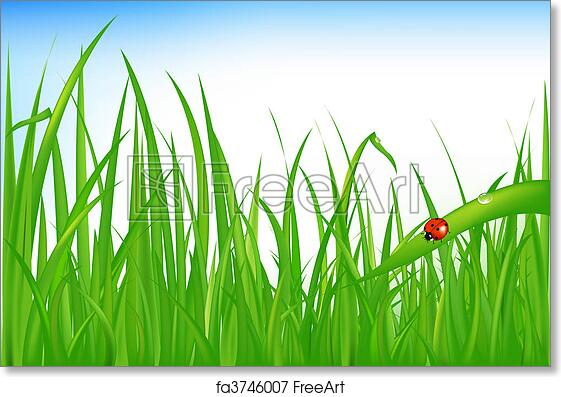 picture about Grass Printable known as Absolutely free artwork print of Gr With Ladybird