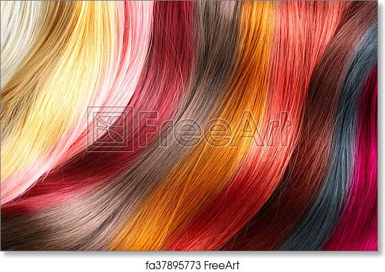 Free Art Print Of Hair Colors Palette Dyed Hair Color Samples