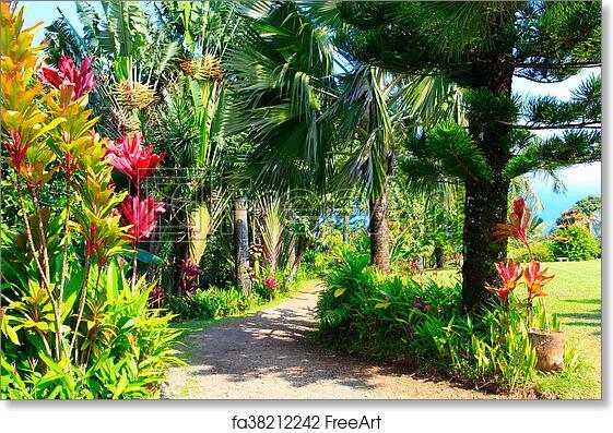 Free art print of A tropical garden . Garden Of Eden, Maui Hawaii. A ...