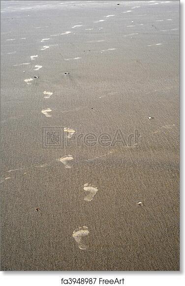 https://images.freeart.com/comp/art-print/fa3948987/footsteps-in-the-sand.jpg