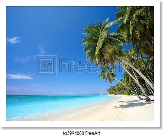 Tropical Island Paradise: Free Art Print Of Perfect Tropical Island Paradise Beach
