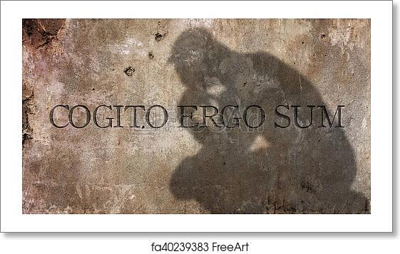 cogito ergo sum  Free art print of Cogito ergo sum. Cogito ergo sum. A Latin ...
