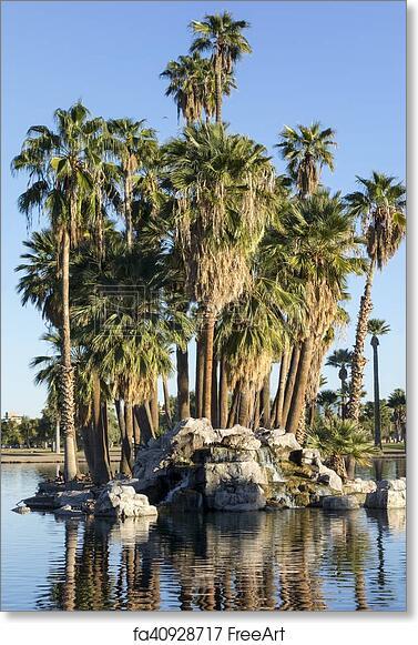 Free Art Print Of Palm Island Encanto Park Lake Phoenix Az Palm Island Of Rocks And Bouldrs In The Middle Of Encanto Park Lake Phoenix Downtown Arizona Freeart Fa40928717