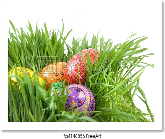 Free Art Print Of Color Easter Eggs In Nest From Green Grass On White
