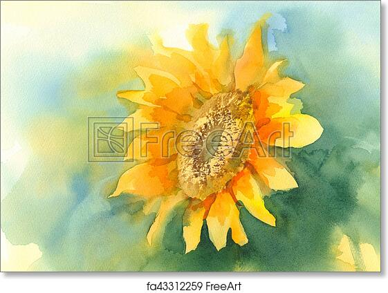 Free Art Print Of Sunflower On Green Background Watercolor