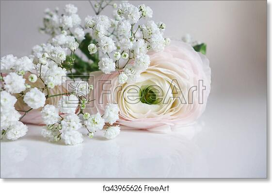 Free art print of closeup of wedding bouquet made of persian free art print of closeup of wedding bouquet made of persian buttercups ranunculus and white babys breath gypsophila flowers lying on the table mightylinksfo