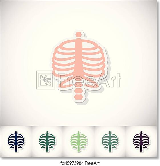 Free Art Print Of Human Rib Cage Flat Sticker With Shadow On White