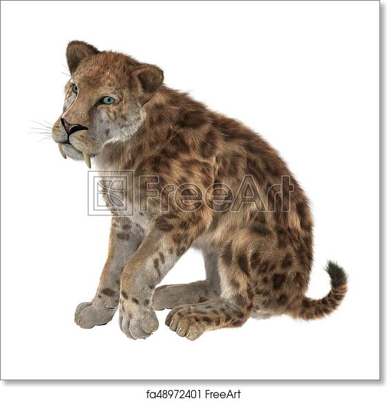 Free Art Print Of 3D Rendering Saber Tooth Tiger On White