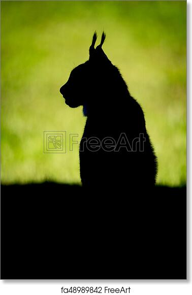 free art print of silhouette of lynx on grass in profile freeart