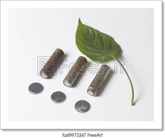 Free art print of Waste batteries of different types are scattered  Nearby  is a green juicy leaf  On a white background  View from above  Disposal of