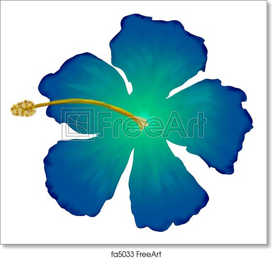 Free Art Print Of Blue Hibiscus A Drawing Of A Blue Hibiscus Flower