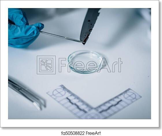 Free Art Print Of Forensic Science Forensic Science In Lab Forensic Scientist Photographing Knife With Blood Evidences Freeart Fa50508822