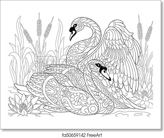Free Art Print Of Zentangle Stylized Two Swans Coloring Page Of Two
