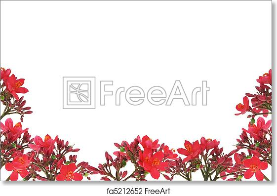 Free Art Print Of Red Floral Design Border Red Floral Design