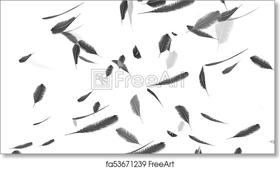 free art print of falling feathers on a white background falling