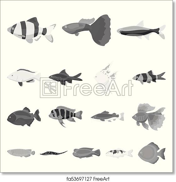 Free Art Print Of Different Types Of Fish Monochrome Icons In Set
