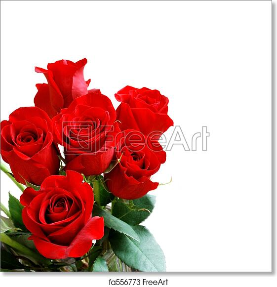 Free Art Print Of Red Rose Bouquet