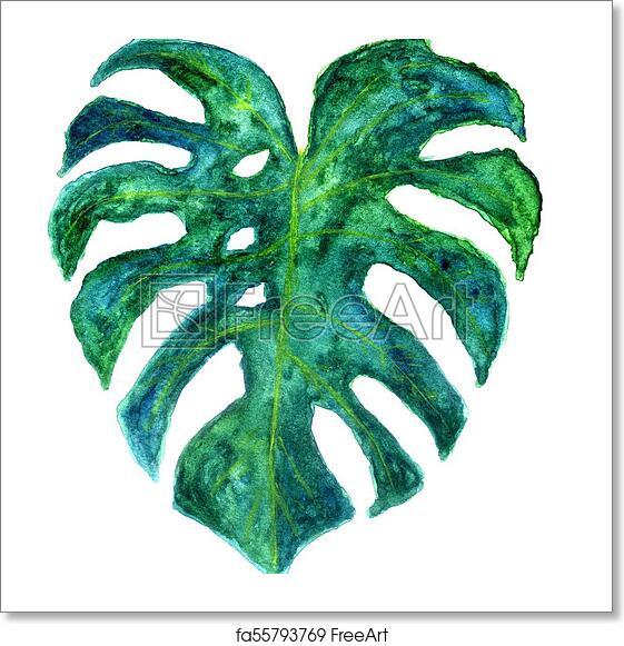 free art print of monstera leaves art decorative big green tropical