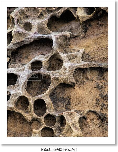 free art print of honeycomb weathering patterns in the yehliu