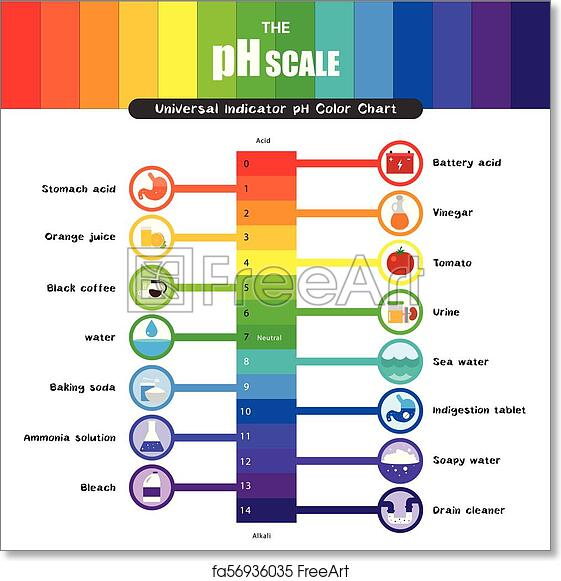 Free Art Print Of The Ph Scale Universal Indicator Ph Color Chart