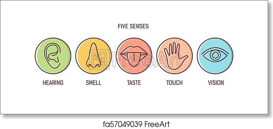 Free Art Print Of Bundle Of 5 Senses Hearing Smell Taste Touch