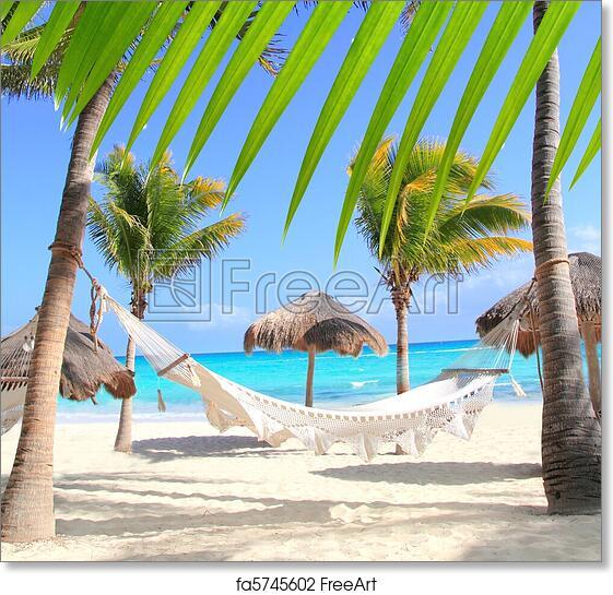 Caribbean Beach Hammock And Palm Trees In Mayan Riviera Mexico
