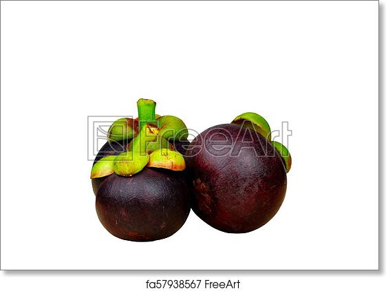 Purple Mangosteen Images