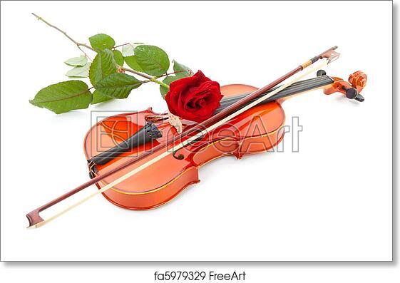 Free art print of Violin and red rose